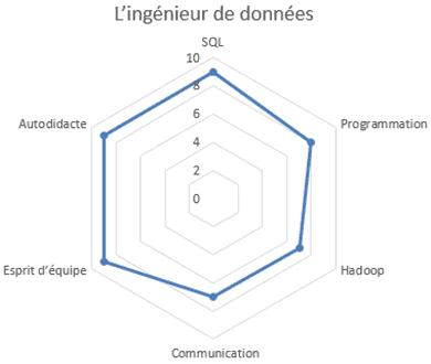 cercle de compétences de l'ingénieur big data