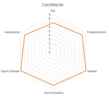 cercle de compétences du data architecte