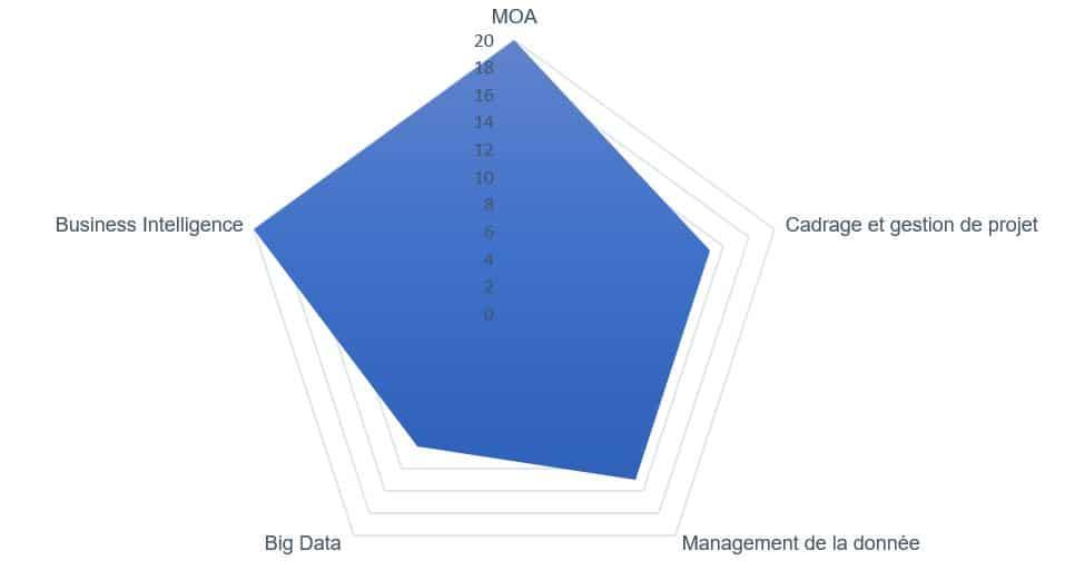 consultant big data