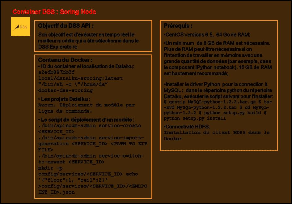 docker DSS Scoring